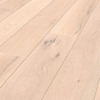 R039 Seashell Oak